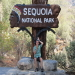 Sequioa National Park